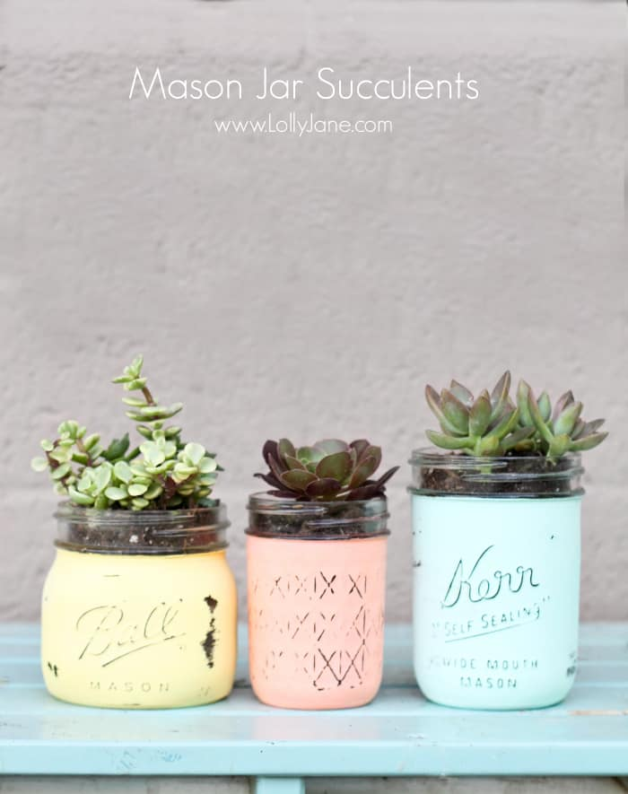 mother's day mason jar succulent pots